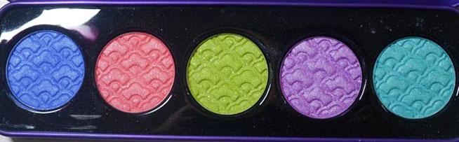 palette-aquataenia-02