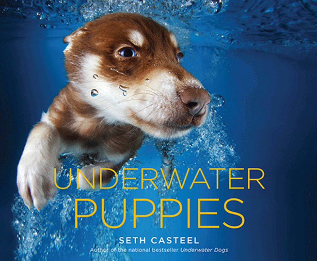 sethcasteel_underwaterpuppies_capa