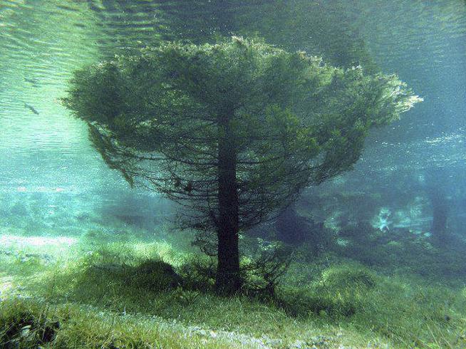 lagoverdeaustria05