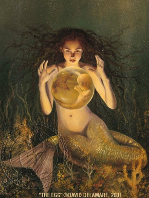 egg mermaid newborn david delamare Sereismo